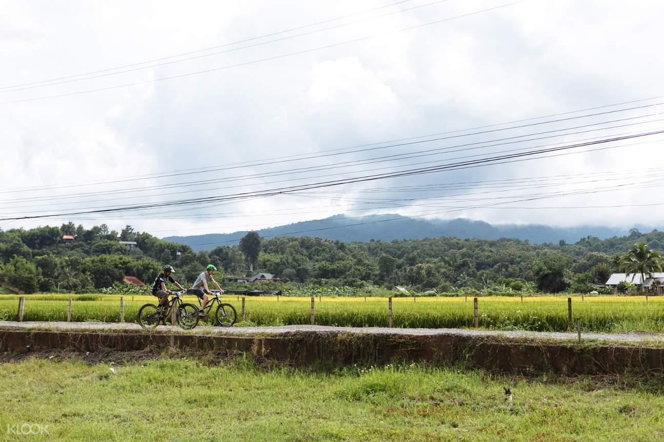 Chiang Mai Biking Day Tour by Trailhead